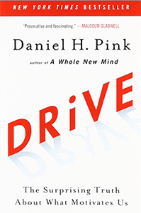 Book cover of Drive.