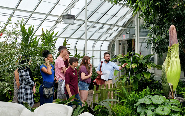 Students take a tour of plant biology with a D'Youville professor