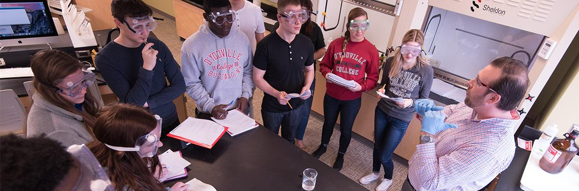 Explore the degrees offered at D'Youville. Find a program that will lead to your success in the classroom and after graduation.