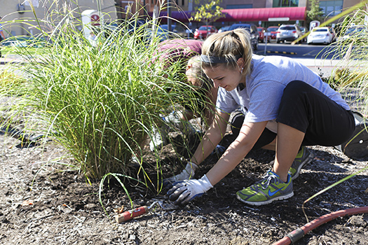 Alumni President, Student Volunteers and DYC Staff Beautify Campus