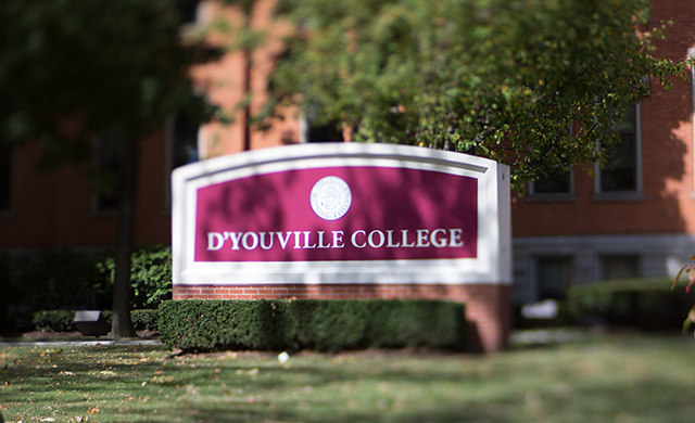 D'Youville Online Courses Approved for Air Force Community College