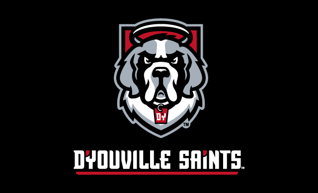 D'Youville Announces New Visual Identity and Mascot