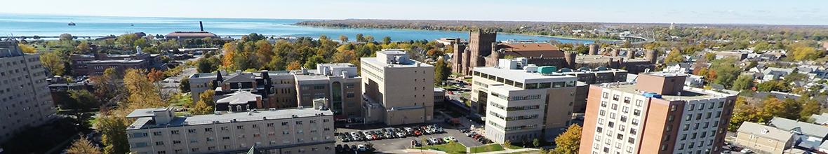 Panorama D'Youville campus and Niagara River